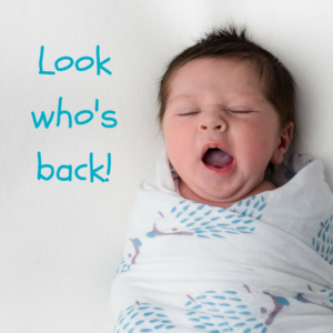 Tiny Chipmunk 100% bamboo muslin swaddle blankets back in stock